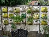 the backyard vertical garden the creative plant for vertical