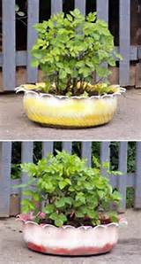 alternative gardning recycled garden planters