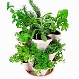 ... Indoor/Outdoor Stacking Flower Pot- Great Gardening Gift Idea - Color
