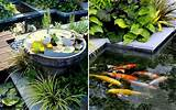 creating fish pond in garden house luxury and elegant home design in