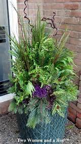 winter container. | container gardens | Pinterest