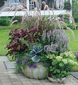 source http www rcgardens ca containers container 20ideas html like