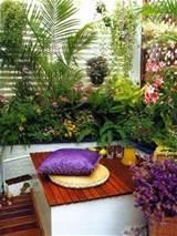plants modern balcony garden fresh balcony garden relax balcony
