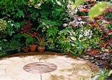 Patio Garden Ideas Plants Photograph | Patio Garden Ideas