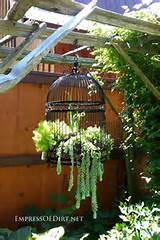 Creative DIY garden container ideas - repurposed birdcage with ...