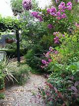 hidden pathway in my garden my own garden pinterest