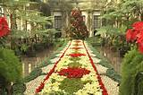 Longwood Gardens Christmas Display