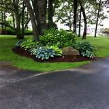 treetside hostas gorgeous love the rock with address engraving