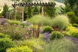 Landscape Architects & Landscape Designers