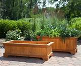 inspirations container gardening patio garden planter box ideas