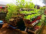 gardening container gardening for vegetables and herbs ideas