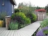 look cottage perennial deck design euphorbia garden garden shed ideas