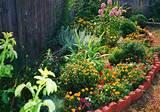Creative Garden Edging Ideas: 25 Amusing Creative Garden Ideas Images ...