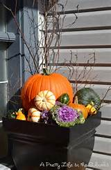 Fall flower pots | Garden ideas for Fall | Pinterest