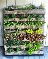 How to Build a Vertical Wooden Pallet Herb Garden | Herb Garden Design