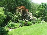 garden borders ideas search results landscaping gallery