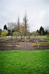 vegetable garden ideas i like how this garden has a tall structure