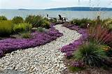 Beach side garden. - Modern - Landscape - seattle - by Dan Nelson ...