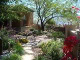 learn about xeriscaping and see examples of low water landscapes