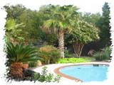 25 wonderful tropical landscaping ideas slodive
