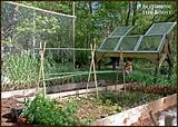 great space! | Kitchen Gardens | Pinterest