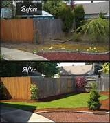 tim lewis gardening outdoor living ideas pinterest