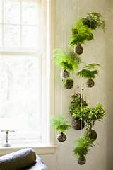 10 Refreshing Vertical Garden Ideas | Wave Avenue