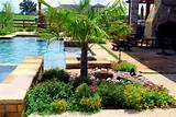 landscaping with rocks and palm - Swimming Pool and Landscaping ...
