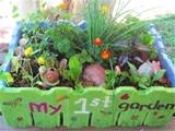 kids salad garden in a box the micro gardener www themicrogardener