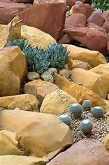 desert cactus rock garden xeriscaping desert scene rock and cactus