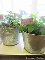 Herb planter ideas | Garden and outdoor ideas | Pinterest