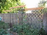 GardenDishes