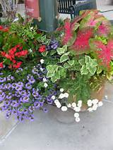 garden container ideas | Outdoor Living | Pinterest