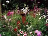 Secret Garden Ideas - Bing Images | Gardens | Pinterest