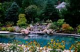 pool landscaping ideas useful for selecting landscape and plants for