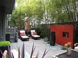 Sichtschutz für Garten selber bauen – aus Holz, Glas, Metal oder ...