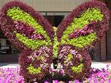 Floral butterfly | Garden ideas | Pinterest