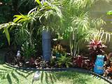 Tropical landscaping with palm trees, bromiliads and orchids. Lakewood ...