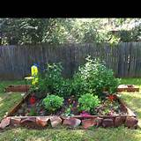 My butterfly garden is looking good! | Garden Envy | Pinterest