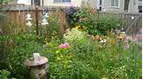 my little flower garden gardening ideas pinterest
