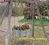 Garden Ally: Garden Junk