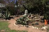 Rock-Oak-Deer: Visiting The Natural Gardener