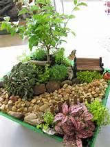 Indoor Gardens Fairy Gardens | Indoor Fairy Gardens | Phelan Gardens ...