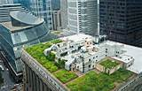122 green roofs rooftop gardens growing a greener world tv