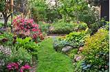 One Perennial Garden Turns into Another | Creating a Secret Garden ...