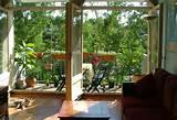 Utilidad de las plantas en la decoración de balcones