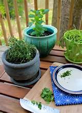 Spring Garden Project: Herb Container Garden