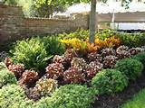 landscaping outdoor ideas pinterest