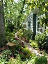 Side-yard landscaping ideas | The Secret Garden | Pinterest