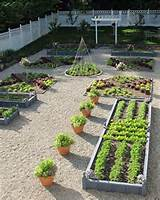 backyard vegetable garden ideas gardening pinterest